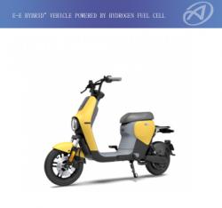 E-E hybrid